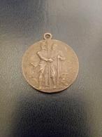 Medaglia 50 Battaglia Solferino E San Martino 1909 - Royal/Of Nobility