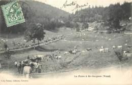 Suisse - Saint Cergues - La Foire En 1905 - VD Vaud