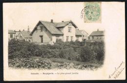 ISLANDE -REYKJAVIK - Le Plus Grand Jardin -CPA Voyagée  1906  -recto Verso - Paypal Sans Frais - Islande