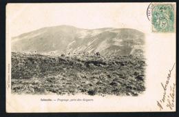 ISLANDE -Paysage Près Des Geysers   -CPA Voyagée  1906  -recto Verso - Paypal Sans Frais - Islande