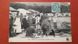 50 - SAINT LO - LES TOURNOUX D'GIGOTS D GIGOTA A LA FAIRE - Saint Lo