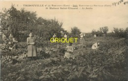 27 Thibouville, Maison St Vincent, Le Jardin, Voir Fillettes Qui Ramassent Des Légumes - Other Municipalities
