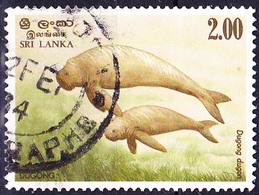 Sri Lanka - Dugong (Dugong Dugon) (MiNr: 607) 1983 - Gest Used Obl - Sri Lanka (Ceylon) (1948-...)