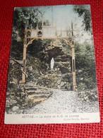 NETTINE  -  La Statue De N. D. De Lourdes - Somme-Leuze