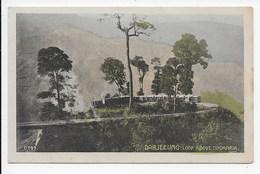 Darjeeling - Loop Above Tindharia - Macropolo D 191 - India
