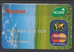 Hungary, Mastercard, Auchan Ad, 2008. - Calendars