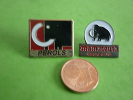 Pin's  MAMMOUTH - Trademarks