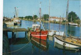 2059 - CPM 17 Ile D'Oléron -  Chenal De Boyardville - Ile D'Oléron