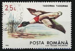 TADORNA TADORNA° - 1948-.... Republiken