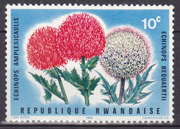 Timbre-poste Gommé Neuf** - Echinops Amplexicaulis Echinops Bequaertii - N° 148 (Yvert) - République Rwandaise 1966 - Rwanda