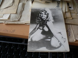 Pin Ups Nude Girl Viki Emgel - Pin-up