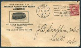 1910 American Poland-China Record Association Pig Hog Swine Advertising Cover. Chicago (Stock Yards Machine Cancel) - United States