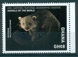 "Ghana 2017 ""binturong ""  Mnh*** - Stamps"