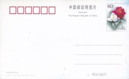 CHINE CHINA :  Entier Postal Fleur Sur Carte Postale - 1949 - ... République Populaire