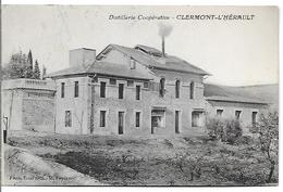 Distillerie Cooperative - CLERMONT-L'HERAULT - Clermont L'Hérault