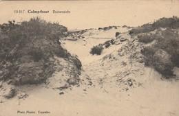 Calmpthout , Duinenzicht  ,(F.Hoelen ,Cappellen , 10017) - Kalmthout