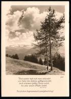 B9445 - Groh - Foto Künstlerkarte - Motivkarte Berge Spruchkarte - Fotokunst München - Künstlerkarten