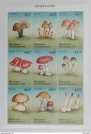 Central Africa 1999** Klb.2302-10. Mushrooms MNH [8;47] - Mushrooms