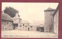 Erezee Chateau De Blier  (Partie Ancienne  Cour) Unused - Erezée