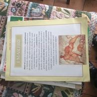 2000 ANNI DI CRISTIANESIMO I MARTIRI - Books, Magazines, Comics