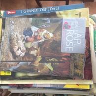 SANTA RITA DALLE ALPI ALLE ROSE - Libri, Riviste, Fumetti