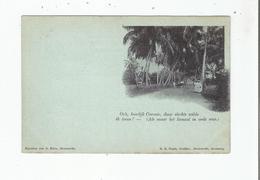 (SURINAME) OCH HEERLIJK CORONIE, DAAR SLECHTS WILDE IK LEVEN !  (ALS MAAR HET KANAAL IN ORDE WAS.) - Surinam