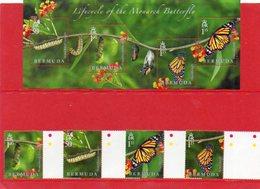 2016 BERMUDA  - Butterflies - Farfalle