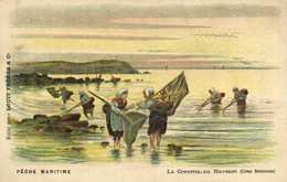 Illustrateur PECHE MARITIME  La Crevette Au Havenet (Cotes Bretonnes)  RV Chocolat Louit Et Cie - Contes, Fables & Légendes