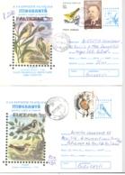 BIRDS, SPARROWS, COVER STATIONERY, ENTIER POSTAL, 4X, 1996, ROMANIA - Sparrows