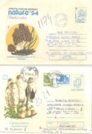 MUSHROOMS, COVER STATIONERY, ENTIER POSTAL, 3X, 1994, ROMANIA - Mushrooms