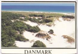 Danmark, Denmark, Beach With Sand Dunes, Used Postcard [22238] - Denmark
