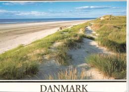 Danmark, Denmark, Beach, Sand Dunes, Used Postcard [22239] - Denmark
