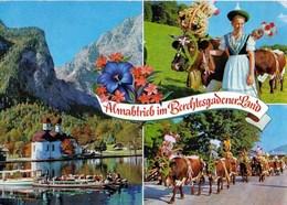 Allemagne Almatrieb  Im Berchtesgadrner Land Über Den Königssee Vorbei An St.Bartholomä Und Der Watzmannostwand TBE - Berchtesgaden