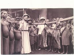 CAMEROUN, MISSIONS - Panthère Prise, Chasse - Pères Du Saint Esprit - Cameroon