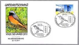 COLIRROJO REAL - Common Redstart - Gartenrotschwanz. Ph.phoenicurus. Neubrandenburg 2011 - Mechanical Postmarks (Advertisement)