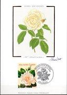 CP  Cachet PJ 28/05/1999 à LYON - Rose Ancienne (Mme Alfred Carrière) N° 3248 - Roses