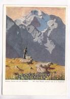 Kleiner Enzian Auf Der Schafalm Mit Dem Munde Gemalt Von A. E. Stegmann, Used Postcard [22251] - Paintings