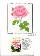 CP  Cachet PJ 28/05/1999 à LYON - Rose Ancienne (Mme Caroline Testout ) N° 3250 - Roses