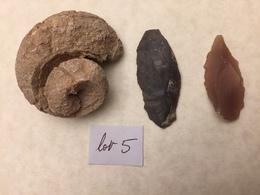 Lots Fossiles Hoggar - Archeologia