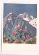 Erich Stegmann, Alpenrosen, Unused Postcard [22262] - Paintings