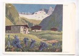 Erich Stegmann, Enzian, Unused Postcard [22264] - Paintings