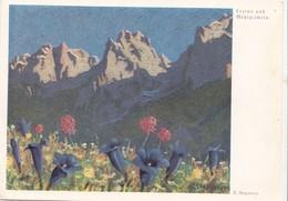 Enzian Und Mehlprimeln, Erich Stegmann, Unused Postcard [22265] - Paintings
