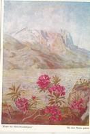 Alpenrosen Bei Garmisch , Nach Einem Mit Dem Munde Gemalten Original Von Arnulf Erich Stegmann, Used Postcard [22267] - Paintings