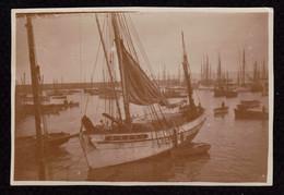 Photographie Ancienne, Port De Pêche Douarnenez 1931 - 5,3 X 8 Cm /  A018 - Lieux