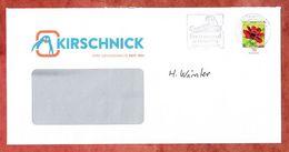 Brief, Pinguin, EF Schokoladen Kosmee Sk, Entwertet Caprima Freizeitbad Dingolfing Briefzentrum 84, 2018 (60451) - BRD