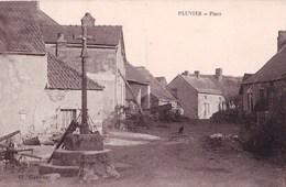 CPA :  Pluvier   (21) Place    Voyagée 1929     Ed Gaumont - France