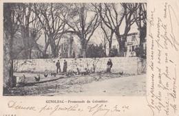 GENOLHAC - Promenade Du Colombier - France