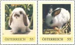 5208  Lapin: 2 Timbres Personnalisés D'Autriche -  Rabbit Personalized Stamps From Austrian Animal Protection Carnets - Konijnen