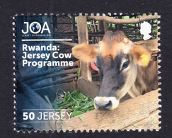 RWANDA Assistance To Improve Diary Cow Breeding On 2018 JERSEY Stamp - Rwanda