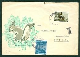 Yugoslavia 1960 Children's Week PORTO Squirrel Letter Cover Michel 21 - 1945-1992 Repubblica Socialista Federale Di Jugoslavia